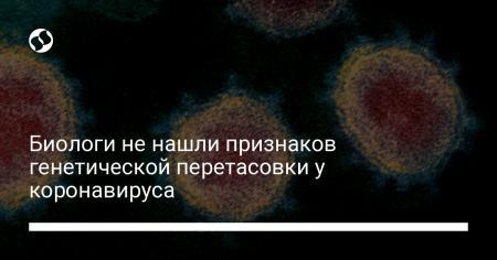 8fc69e478667e66da9bffbe6be136db1